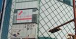 Vivo Bearsi姫路