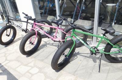 ファットサンドバイク